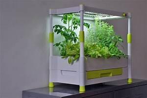 Indoor Gewächshaus Mit Beleuchtung : produkt testwelt greenyou g rtnern in den eigenen vier ~ Watch28wear.com Haus und Dekorationen