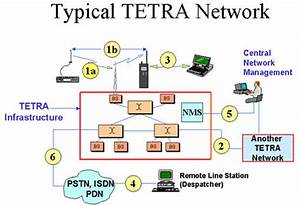 Tetra Network Architecture  - Image