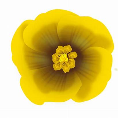 Flower Yellow Clipart Clip Svg Arts Against