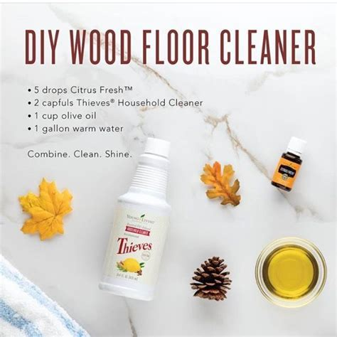 Best 25  Natural wood cleaner ideas on Pinterest