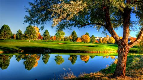 Nature, Landscape, Trees, Grass, Fall, Colorful, Water