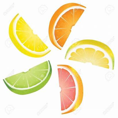 Lemon Clipart Slices Citrus Slice Orange Fruits