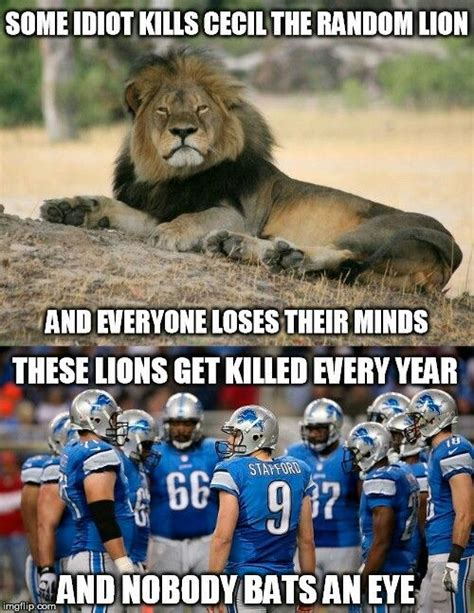 Lions Super Bowl Meme - 479 best nfl images on pinterest nfl football dallas cowboys and funny pics