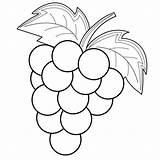 Grapes Coloring Fruit Animal Zekayapay sketch template