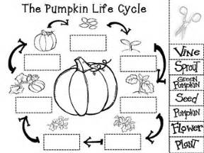 Life Cycle Of A Pumpkin Sequencing Worksheet by Cut And Paste The Steps Of The Pumpkin Life Cycle This A