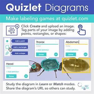 31 A Data Flow Diagram Quizlet