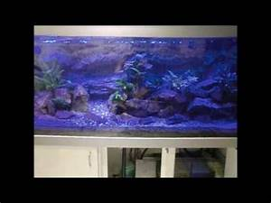 Aquarium Led Beleuchtung : malawi becken aquarium mondschein led beleuchtung youtube ~ Frokenaadalensverden.com Haus und Dekorationen