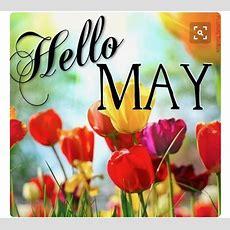 Month Of May Images Wwwpixsharkcom Galleries