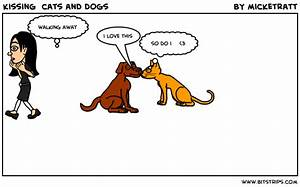 Kissing Cats And Dogs Bitstrips Cat Dog Kisses - Litle Pups