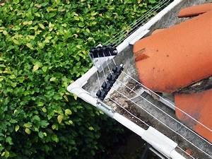 Marder Vom Auto Fernhalten : marder vertreiben dachboden ultraschall marderabwehr marder vertreiben ultraschall dachboden ~ Frokenaadalensverden.com Haus und Dekorationen