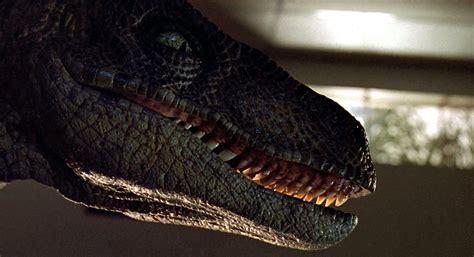 Jurassic Jungle Boat Ride Wiki by The Unicorn S World Jurassic Park Velociraptors