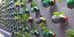 Como hacer un huerto vertical con botellas La Huerta de Ivan