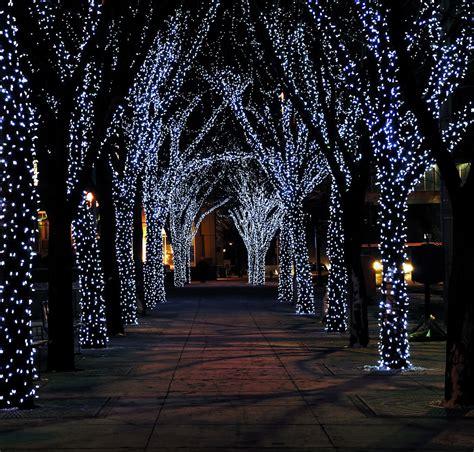 christmas lighting tree lights merry events 2011 rsvp design services