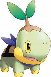 turtwig images