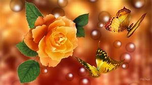 3D Yellow Rose Wallpapers Best Yellow Rose HD