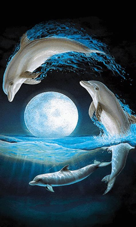 amazoncom dolphins  wallpaper appstore  android