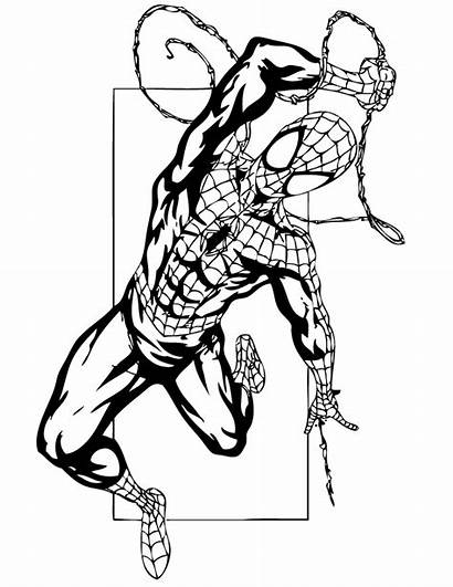 Coloring Spider Pages Printable Clipartbest Clipart