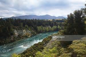 New Zealand Mountains and Forest