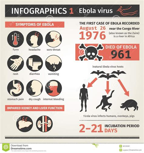 Infographics Ebola Virus Symptoms Deaths Stock Vector. Predictive Analytics Case Study. Arizona Business Attorney Non Profit Webinars. Occupational Therapist Training. Real Estate Agents Concord Ca. Corporate Wellness Ideas Backup Dell Computer. The Best Latex Mattress Drach Market Research. Quitting Smoking Day 4 Virtual Server Pricing. Loan At Bank Of America Fred Frank Bail Bonds