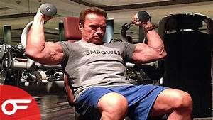 Arnold Schwarzenegger Workout 2017 | Workout ...