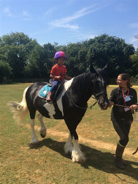 riding horse tardebigge