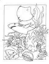 Aquarium Coloring Pages Pa Printable Print Getcolorings sketch template