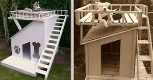 Niche Pour Chien Avec Terrasse : plan niche pour chat exterieur 1 niches pour chien avec ~ Dailycaller-alerts.com Idées de Décoration