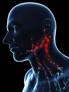 What Are Paratracheal Lymph Nodes