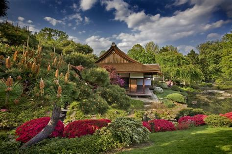 a love of japanese gardens confero dezso