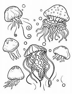 Jelly Fish Coloring