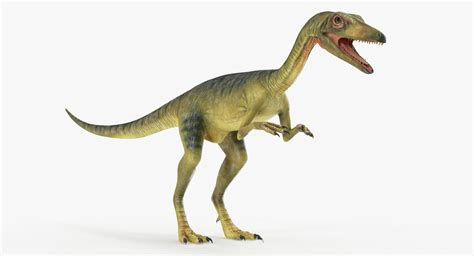 3d Model Compsognathus Dinosaur Rigged Animate