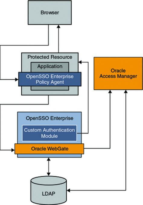 understanding  oracle access manager  cases sun