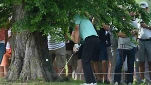 Wann Darf Ich Bäume Fällen : golfregeln wann darf ich den ball nochmal droppen ~ Eleganceandgraceweddings.com Haus und Dekorationen