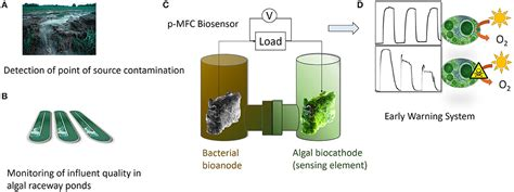 frontiers effect  electrode properties   performance   photosynthetic microbial fuel