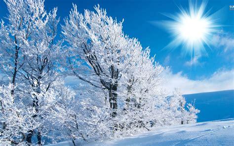 winter wide wallpaper  hd wallpapers hd