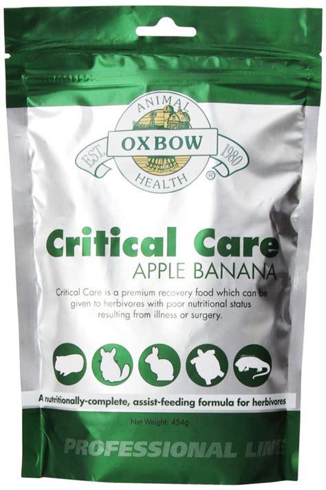 Oxbow Critical Care apskats - Mājas Trusis