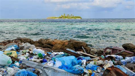 wie lange braucht rasen zum keimen wie lange braucht wasser zum gefrieren umwelt plastik unverzichtbar oder gro e gefahr m ll im