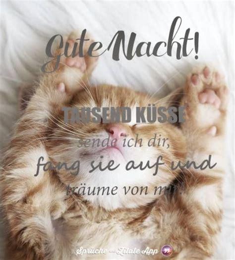 Erholsame Nacht Bilder by Pin Inge Wolf Auf Witziges Animals Und Quotes