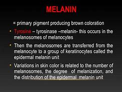 HD wallpapers hair melanin definition