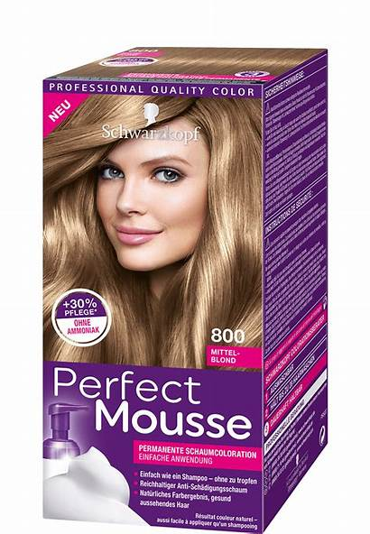 Haarfarbe Mittelblond Mousse Perfect Helles Baseline Mahagoni
