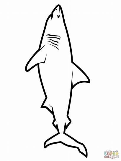 Shark Coloring Printable Realistic Colorear Tiburon Drawing