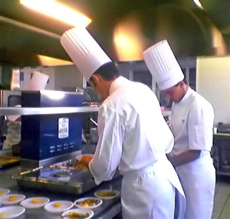 cuisine and cook cook profession