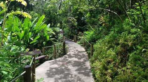 kauai botanical gardens top 4 kauai botanical gardens