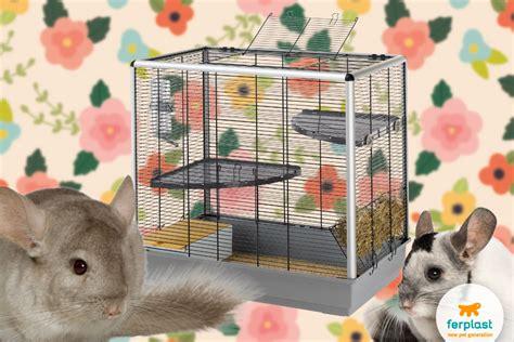 Gabbia Per Cincilla - i grandi roditori scegli la gabbia per roditori adeguata