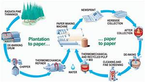 Understanding Recycling Paper And Cardboard