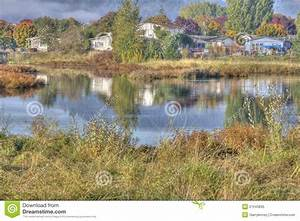 Country, Pond, In, Hdr, Stock, Image, Image, Of, Yellow, Reeds