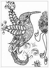 Coloring Complex Printable sketch template