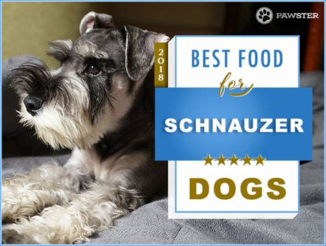 top  recommended  foods   schnauzer