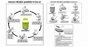 chlorhexidine project examples demand generation i kit With instruction leaflet template