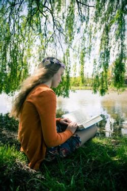 interesting facts  weeping willow trees lovetoknow
